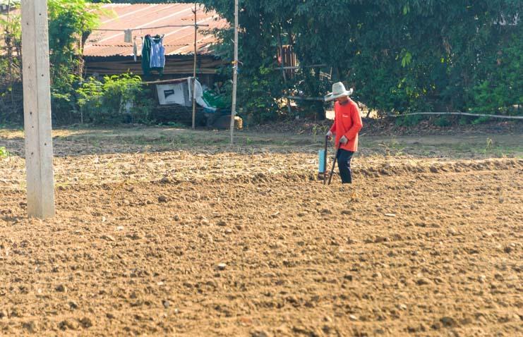 Farming in Thailand Train from Bangkok to Kanchanaburi Thailand