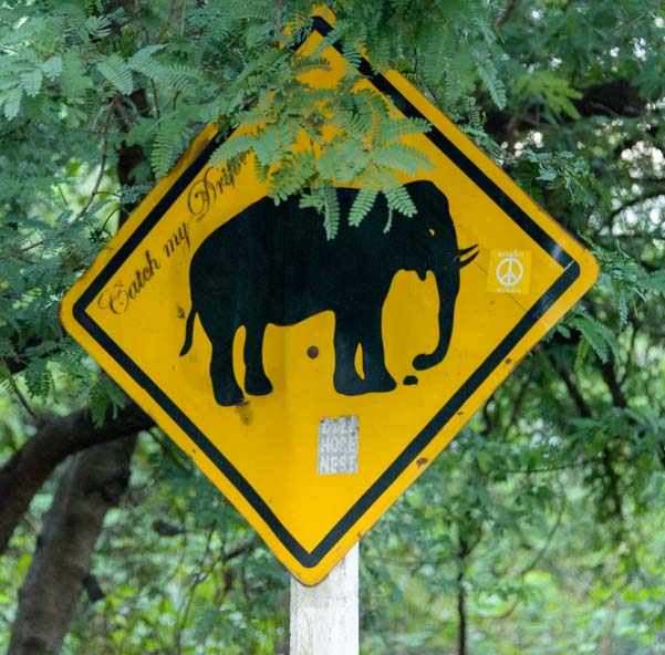 Elephant road sign in Kanchanaburi Thailand