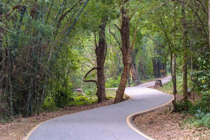 Hike to Erawan Falls Kanchanaburi Thailand