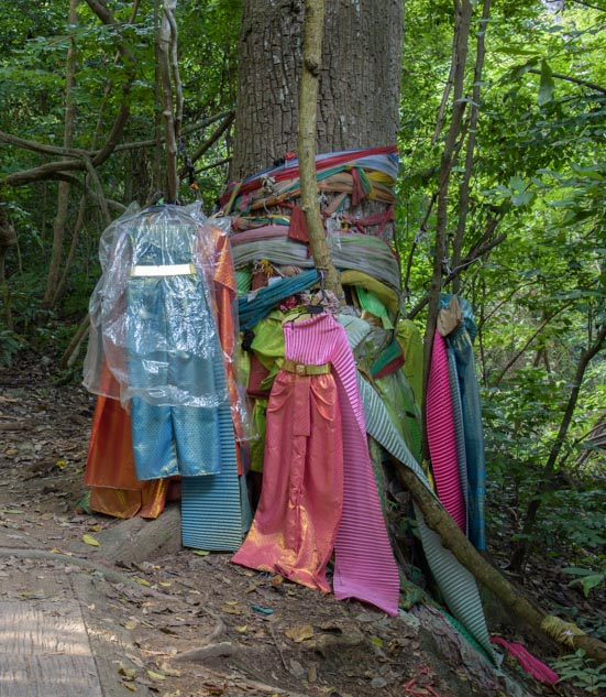 Appreciative people said thanks to the tree goddess Ta Kien Tong by giving her a beautiful dress