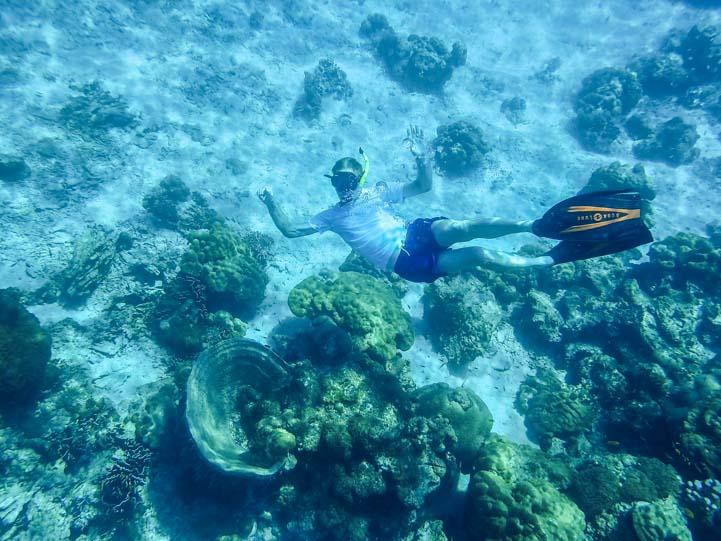 Ko Rok snorkeling Dive & Relax Snorkeling Tour in Ko Lanta Thailand