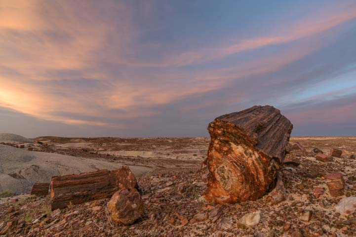 Sunset at Jasper Forest Petrified Forest National Park Arizona