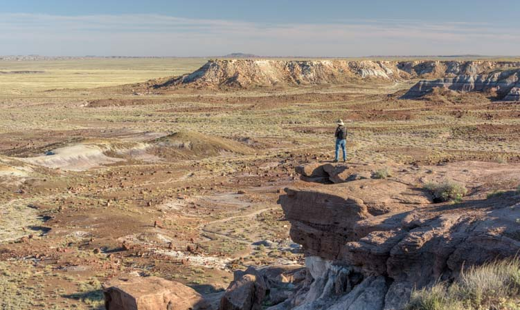Jasper Forest Overlook Petrified Forest National Park Arizon