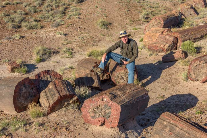 Sitting on petrified logs Petrified Forest National Park Arizona Jasper Forest