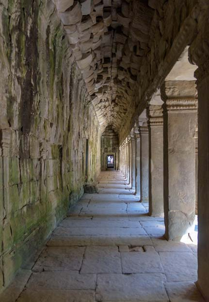 Hallway in Ta Prohm Angkor Wat ancient Khmer ruins Siem Reap Angkor Cambodia