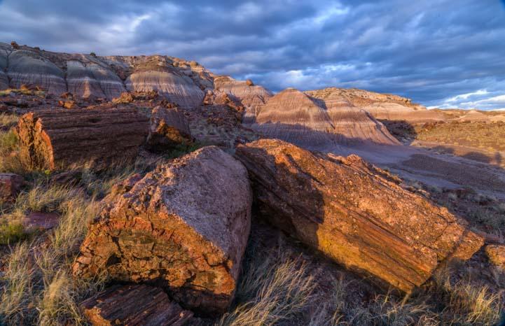 Storm clouds Petrified Forest National Park Arizona