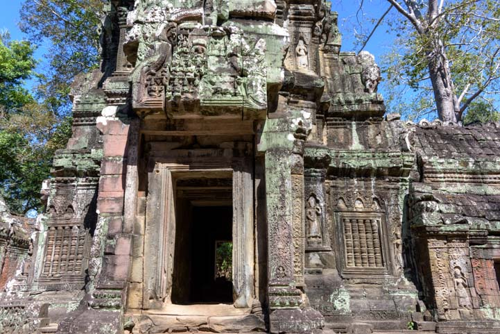 Elaborate carving at Ta Prohm Angkor Siem Reap Cambodia