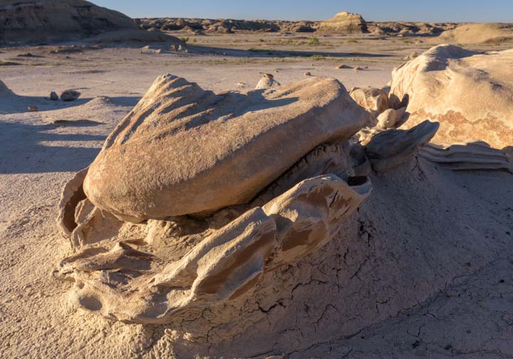 Alien egg Bisti De-Na-Zin Wilderness New Mexico