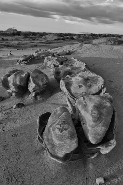 Eggs alien egg factory Bisti Badlands De-Na-Zin Wilderness
