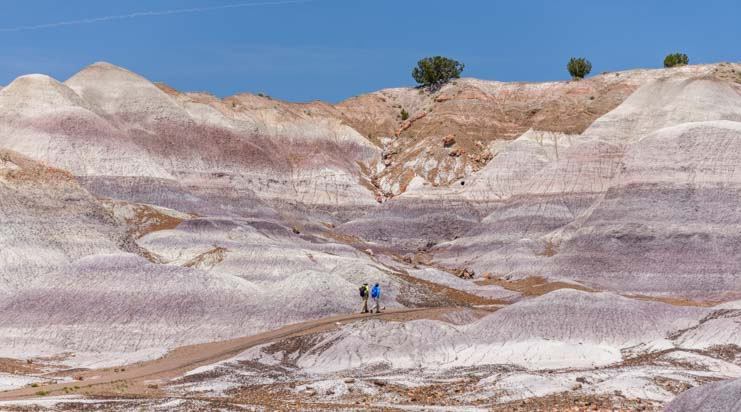 Hiking Blue Mesa Trail Petrified Forest National Park Arizona