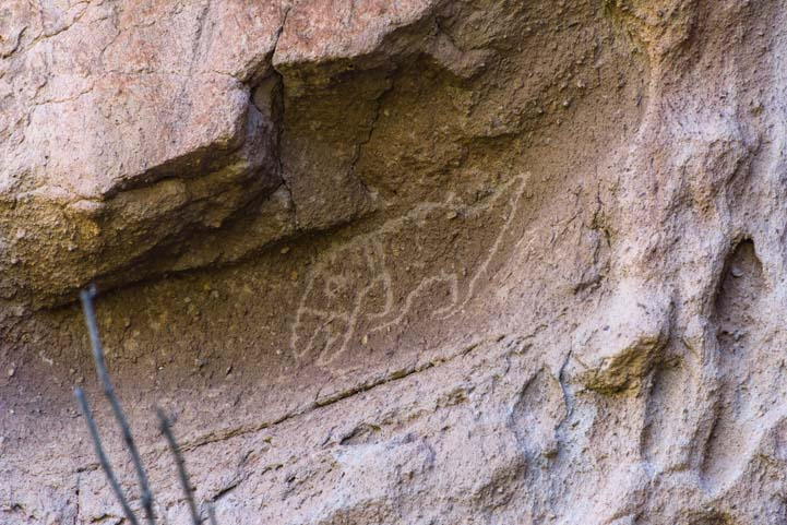 Petroglyph rock art Bandelier National Monument New Mexico