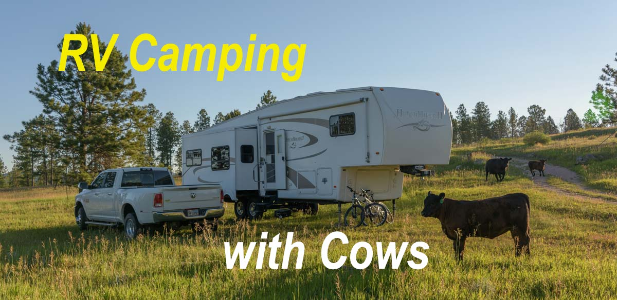 Black Hills National Forest Sd Rv Boondocking Camping