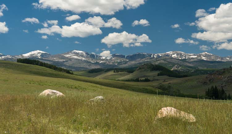 Bighorn Mountains in Bighorn National Forest Wyoming