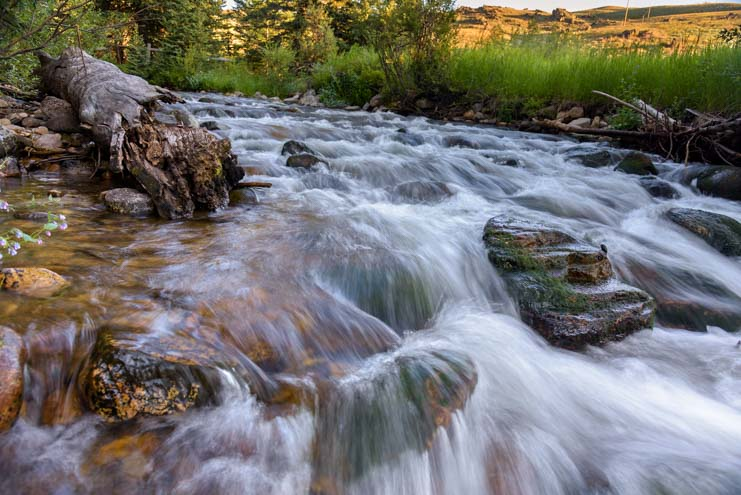 Cascade and brook Bighorn National Forest Wyoming