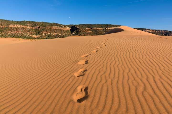 Footprints Coral Pink Sand Dunes State Park Utah RV trip-min