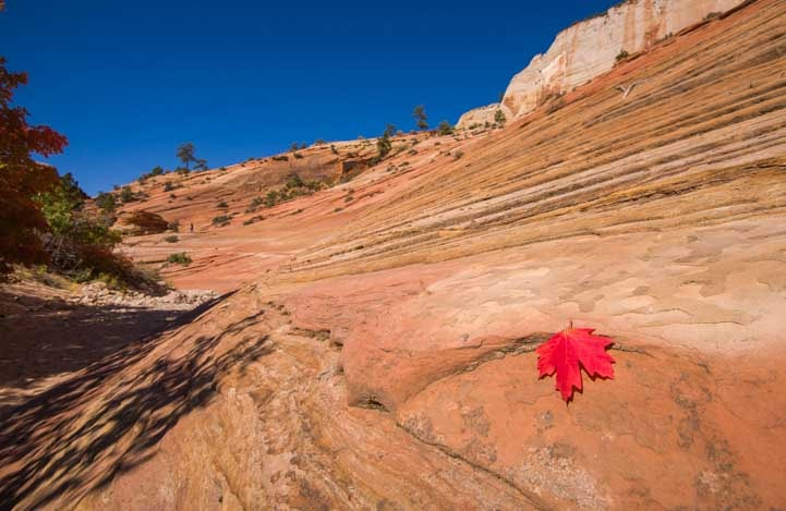 Stone dunes Zion National Park RV trip-min