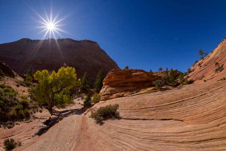Star burst and stone sand dunes Zion National Park Utah RV trip-min