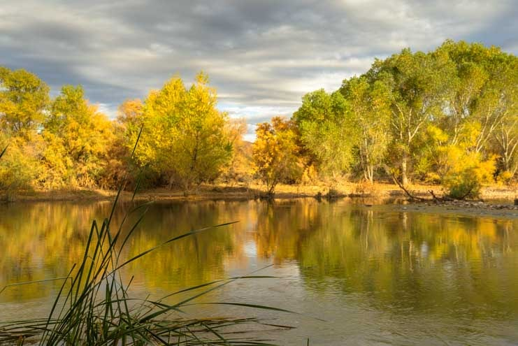 RV camping on Arizona Verde River-min