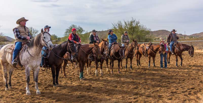 Cowboy cattle sorting event in Phoenix Arizona ranch-min