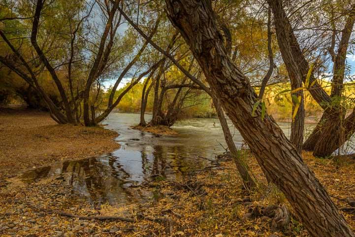 Verde River Reflections in Arizona-min
