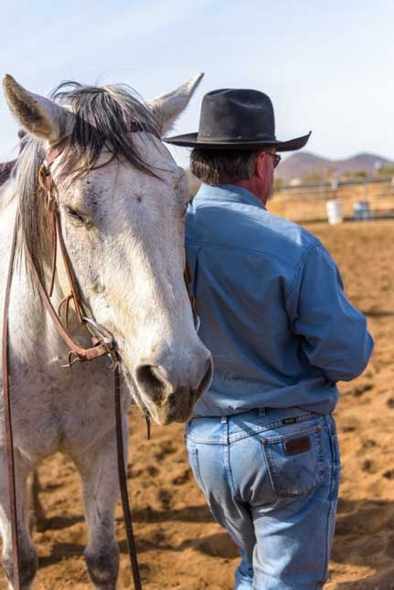 Cowboy resting with his horse at cattle sorting on Arizona ranch-min