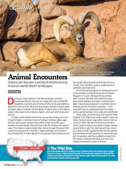 Motorhome Magazine Feature Arizona Animals by Emily Fagan December 2017-min