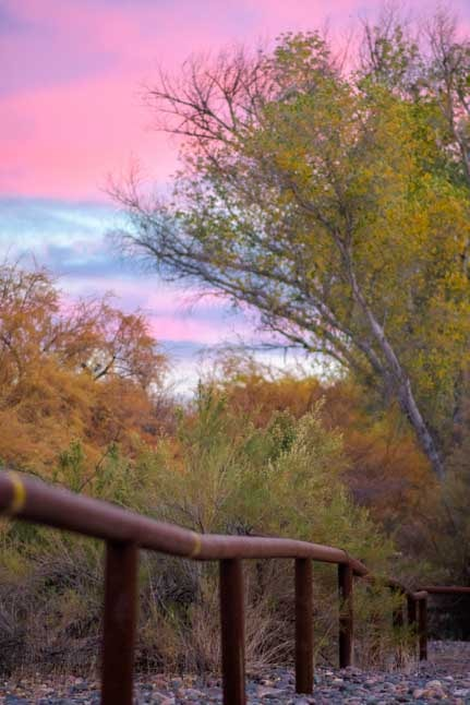 Pink sky at sunset in Arizona-min
