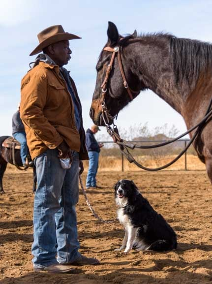Cattle dog with horse and cowboy on Arizona ranch-min