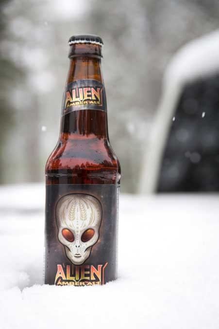 Alien Ale chilling in the snow-min