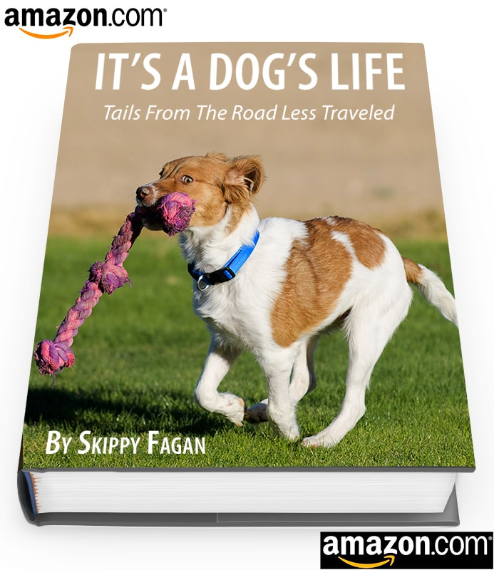 Book about puppy Skippy-min