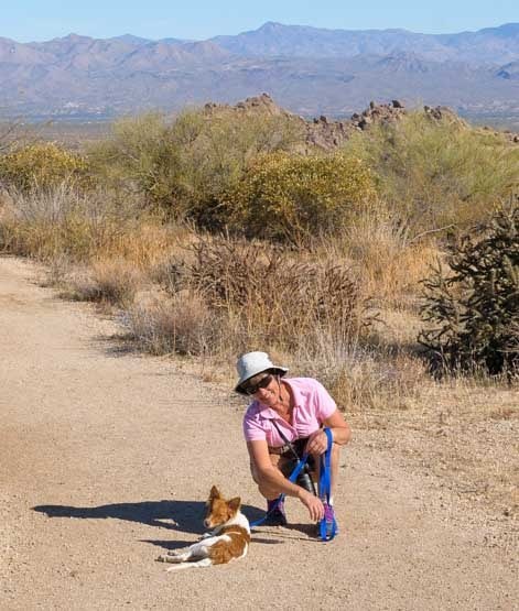 Hiking and RVing with a puppy dog-min
