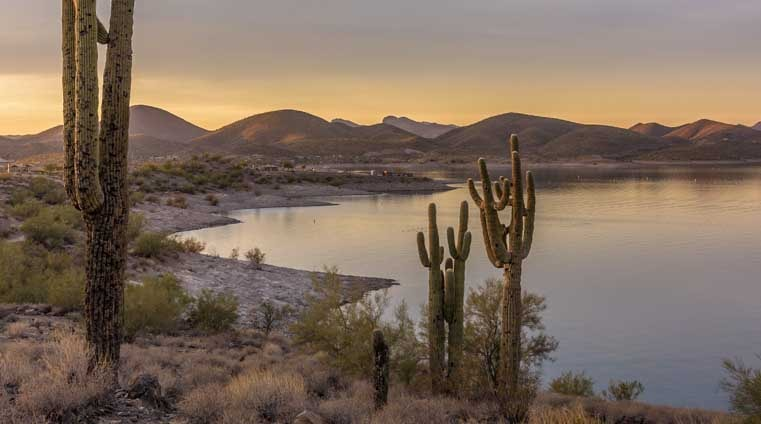 Lake Pleasant Arizona at sunset with saguaro cactus-min