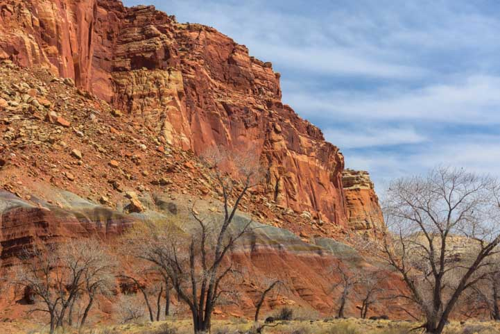 Trees and red rocks Fruita Utah Route 24 Scenic Drive Capitol Reef National Park RV trip-min