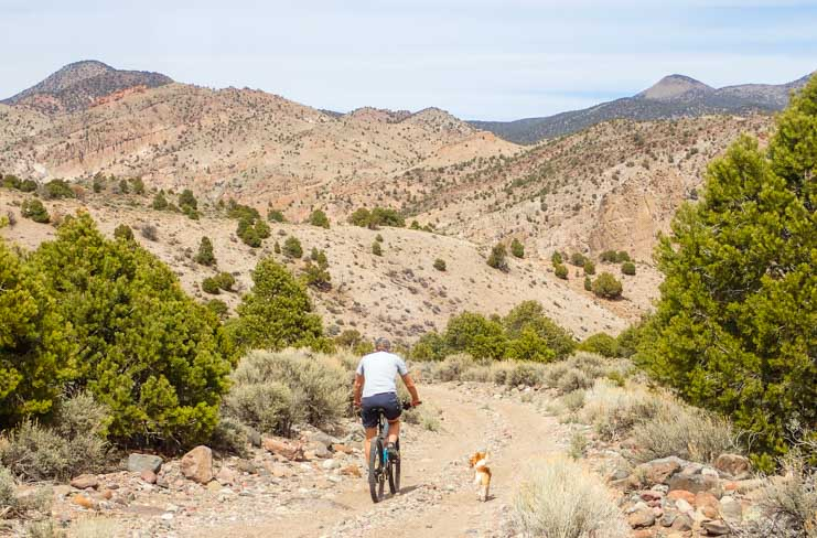 Mountain biking near Minersville Utah-min