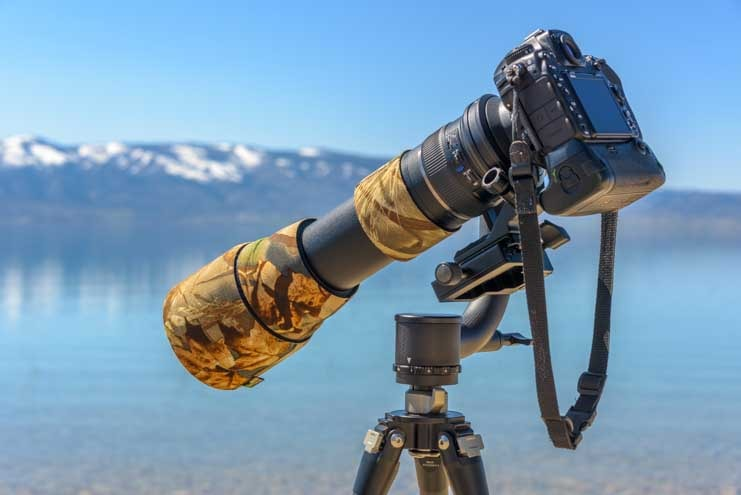 Sunwayfoto GH-01 Gimbal Head with Nikon D500 and Tamron 150-600-min