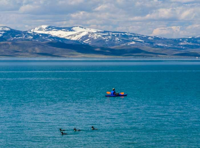 Kayaking with ducks at Bear Lake Utah-min