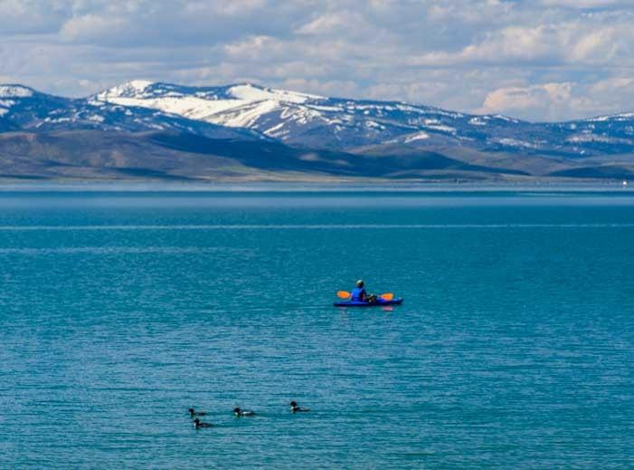 Kayaking with ducks at Bear Lake Utah-min