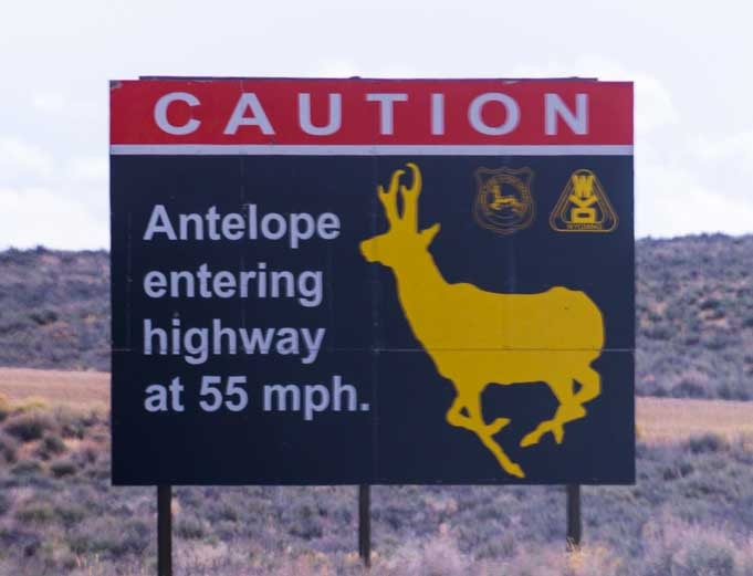 Road sign Antelope Crossing rural Wyoming RV trip Slow traffic-min