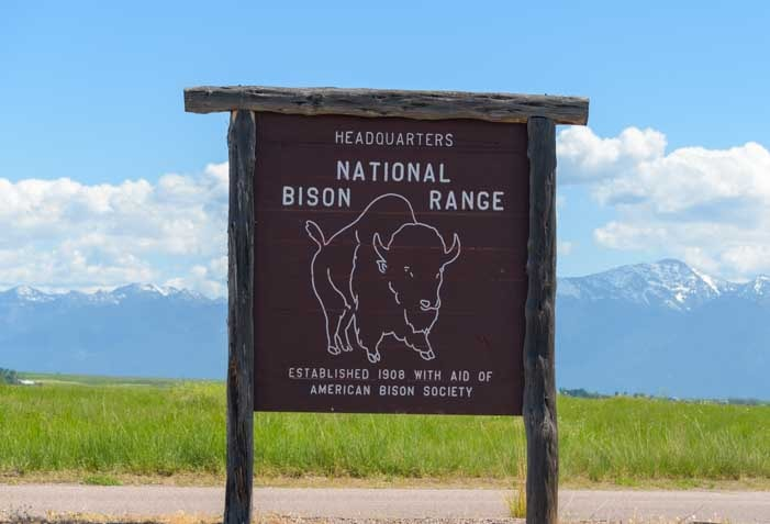 National Bison Range in Montana RV trip-min