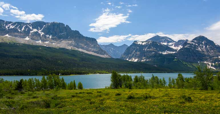 Lake Sherburne and wildflowers Many Glacier Entrance Glacier National Park Montana-min