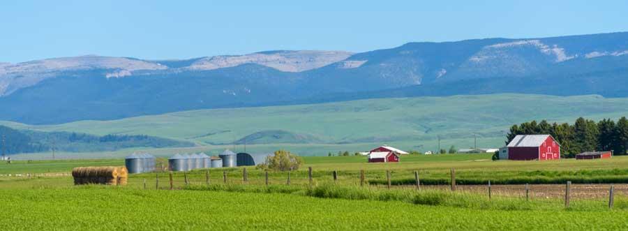 Central Montana farm land-min