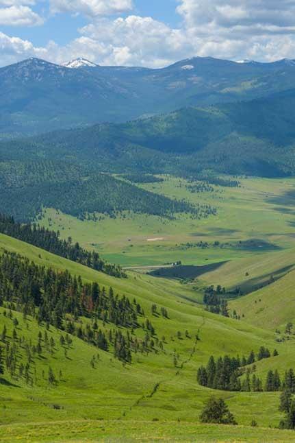 Montana rolling hills National Bison Range-min