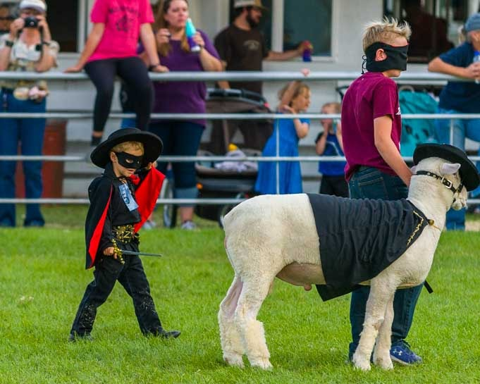 Zorro sheep dress-up Johnson County Fair 4H-min