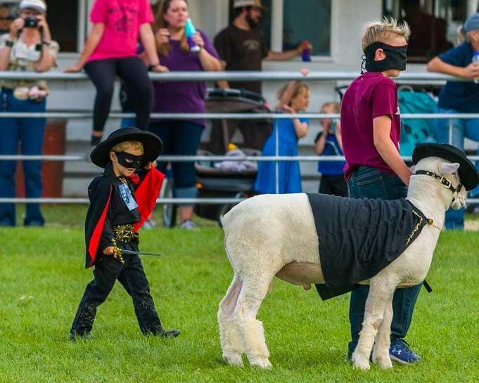 Zorro sheep dress-up Johnson County Fair 4H-min