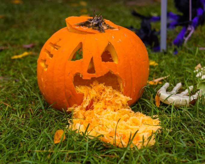 Pumpkin spilling its guts at Halloween-min