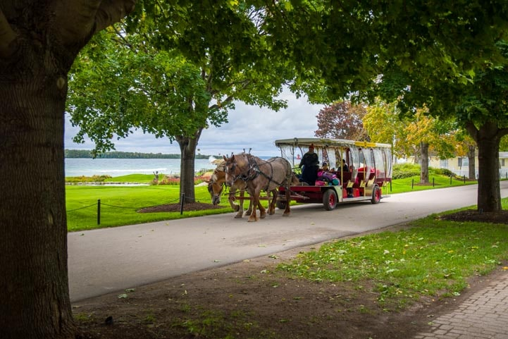 Horse drawn wagon Mackinac Island Michigan-min