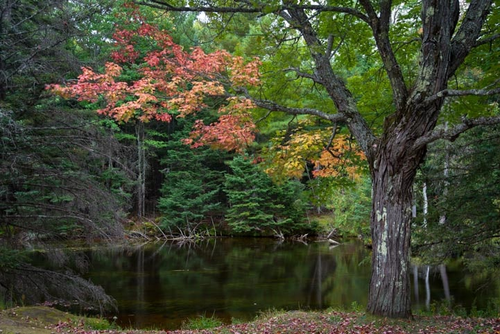 Peace in Bond Falls in Autumn Michigan Upper Peninsula-min