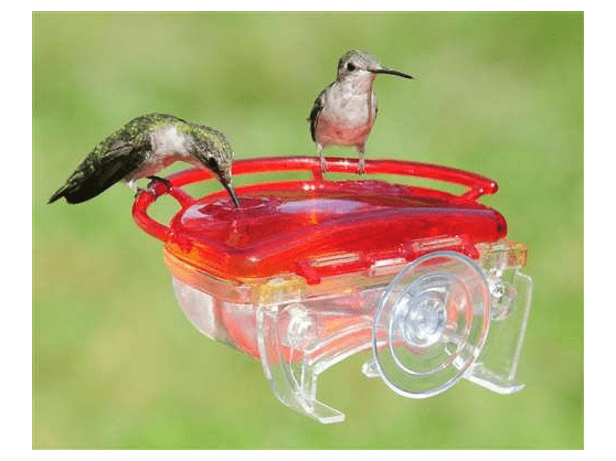 Window hummingbird feeder-min