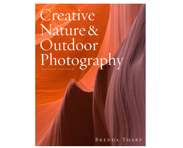 Creative Outdoor and Nature Photography Brenda Tharpe-min