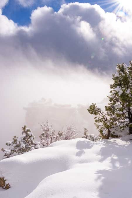 Fresh snow in Grand Canyon National Park-min